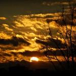 «Перед рассветом»